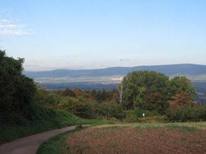 Kurz vor Heidesheim, Blick in den Taunus