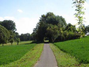 Selztal-Radweg zwischen Ingelheim und Schwabenheim