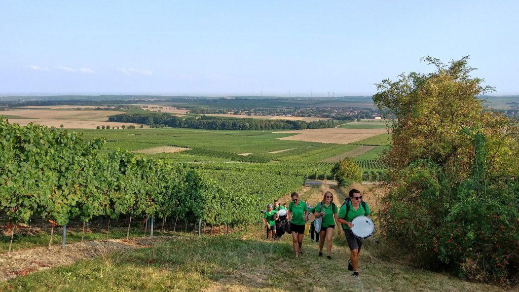 Die Bigband Selzen-Köngernheim kommt zum Spielen bei der Weinprobe
