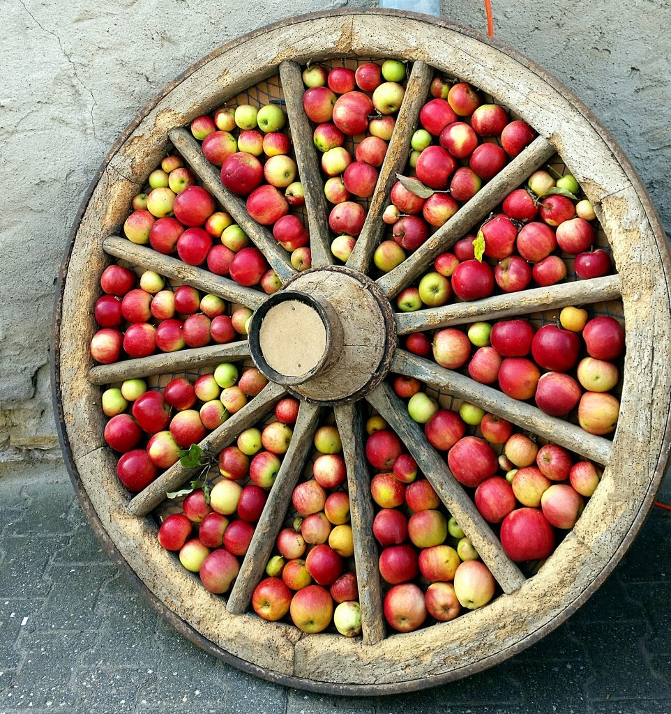 Bauern- und Handwerkermarkt Nieder-Hilbersheim Rad mit Äpfeln