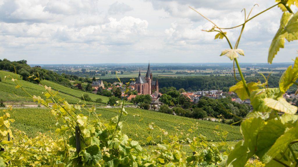Blick auf Oppenheim