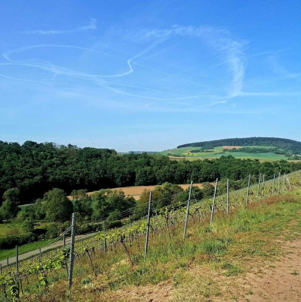 Landschaft bei Siefersheim