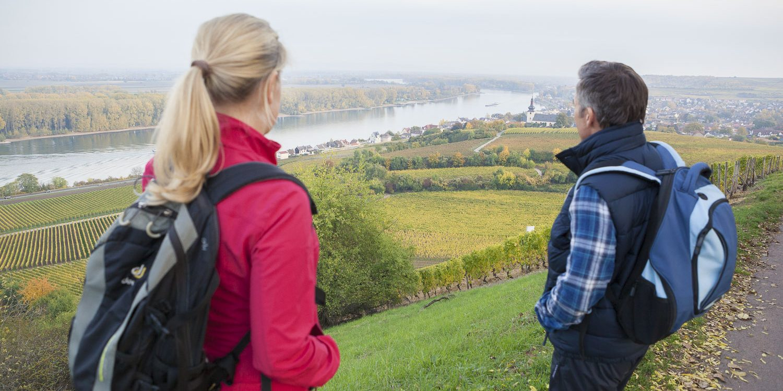 Titelbild RheinTerrassenWeg im Herbst