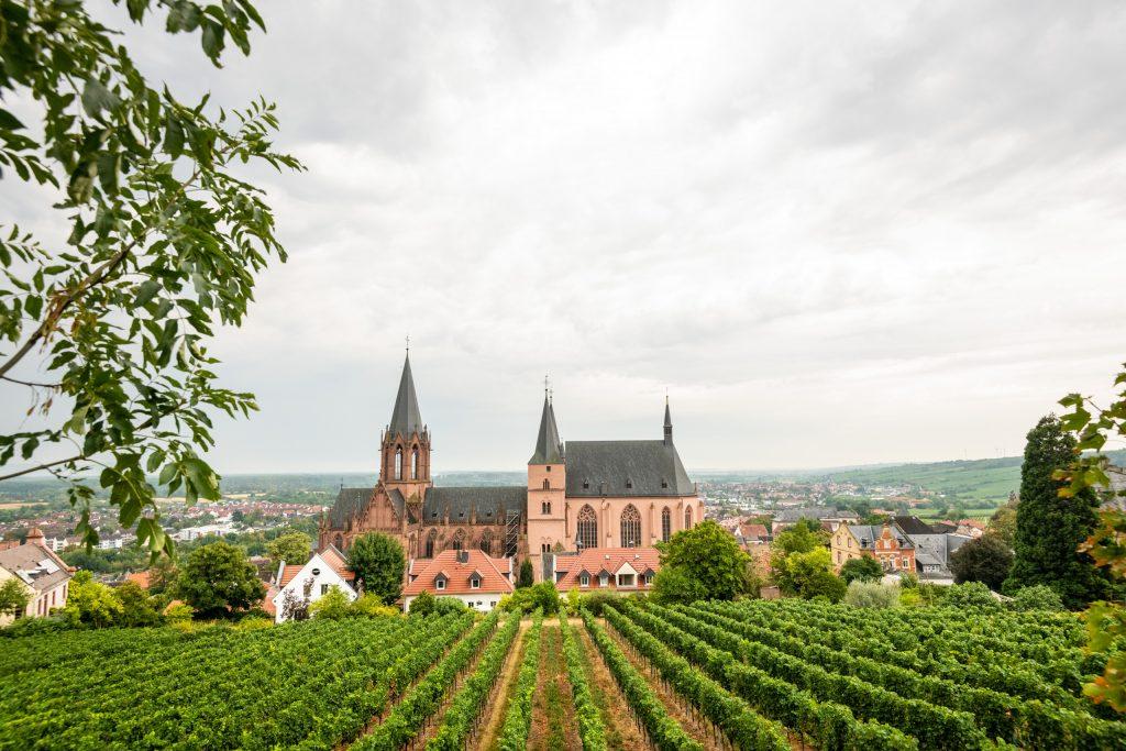 Blick auf die Katharinenkirche vomr RheinTerrassenWeg