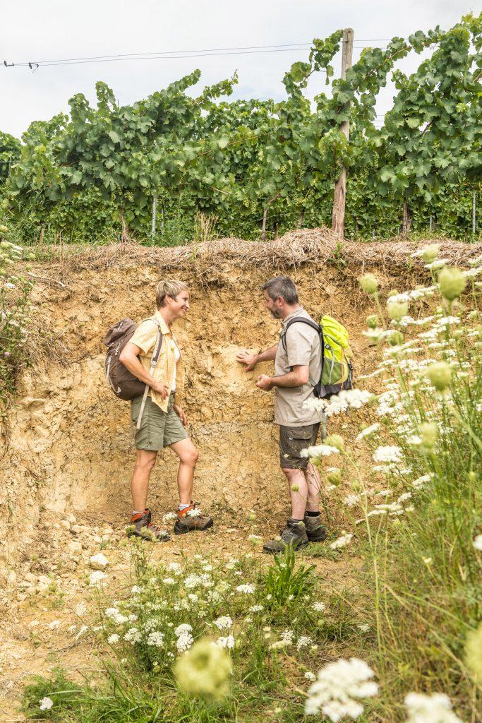 Wanderpaar am Terroir Bodenprofil auf der Hiwweltour Stadecker Warte