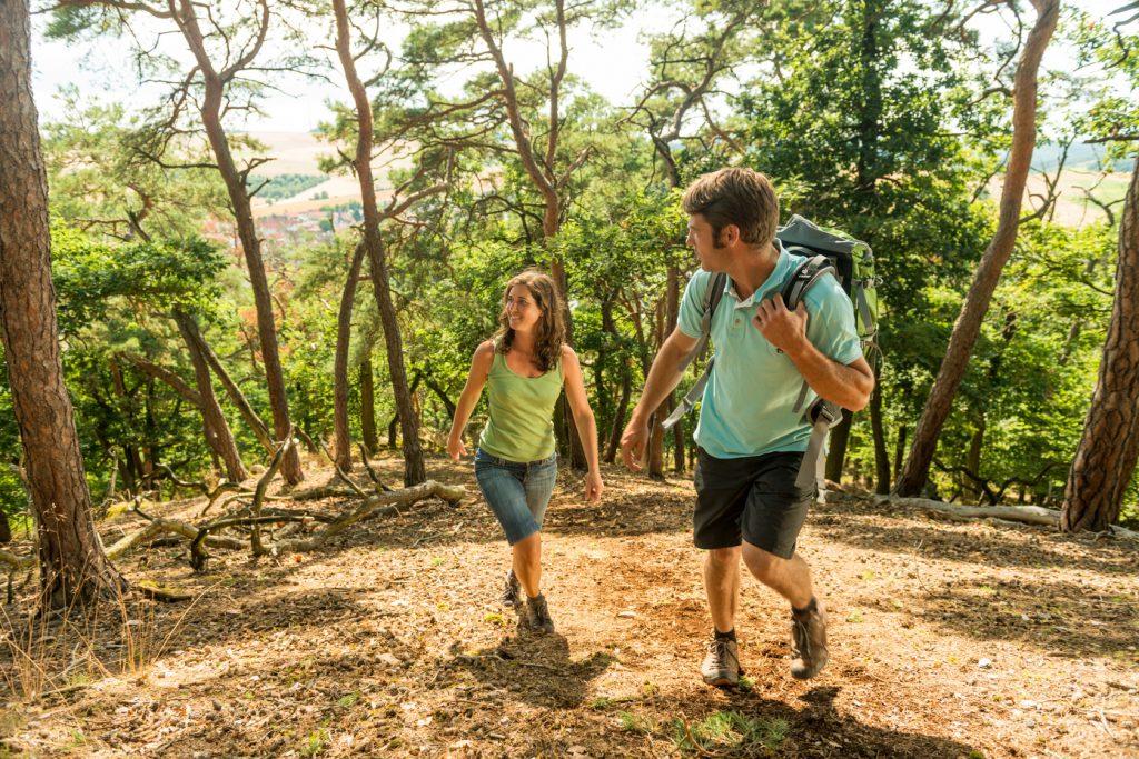 Wanderpaar im Kiefernwald auf der Hiwweltour Eichelberg